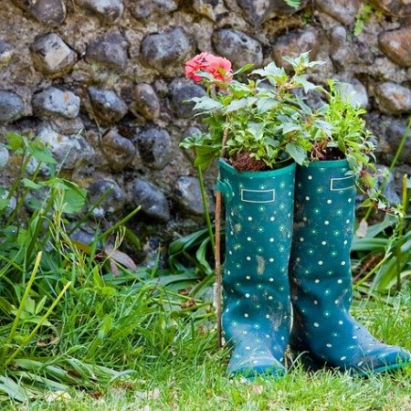 Wellington boots in a garden with plants in them