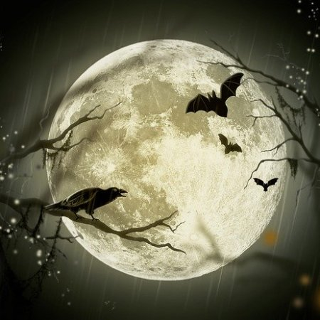 A giant super moon in the sky with bats flying