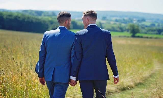 A gay married couple holding hands in a meadow
