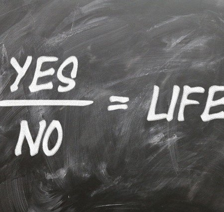Yes divided by no equals life