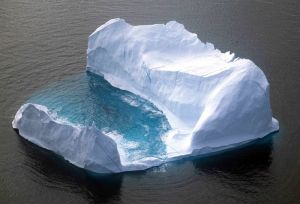 Jeff the Iceberg.