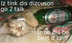 Yes, even the cats need to get drunk.