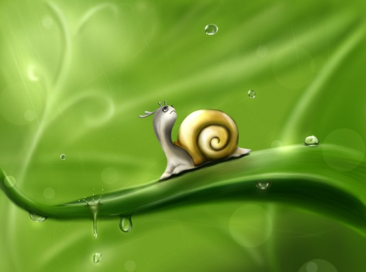 Snails in Europe enjoy the odd weather. It's believed snails will one day rule the Earth.