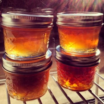 """Marmalade, which can also be referred to as """"jam with bits of peel in it."""" Innit."""