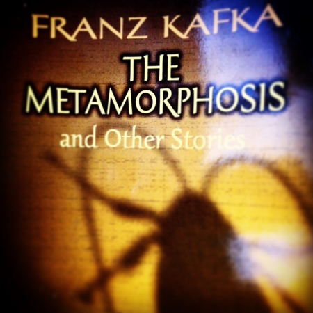 Franz Kafka The Metamorphoses