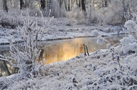 Snow and dandruff