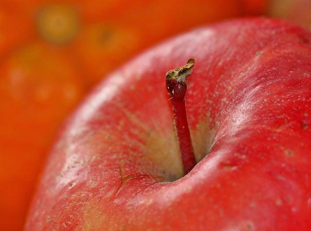 Apple stalk