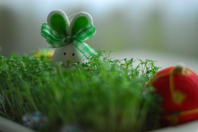 Easter Bunny Newsletter