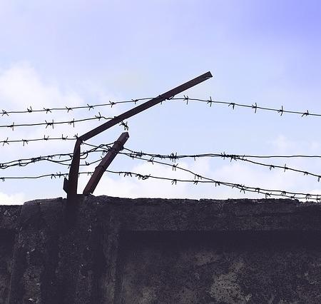 Convict parole