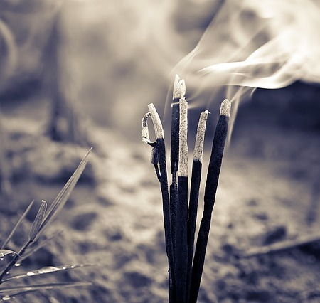 Incense sticks food