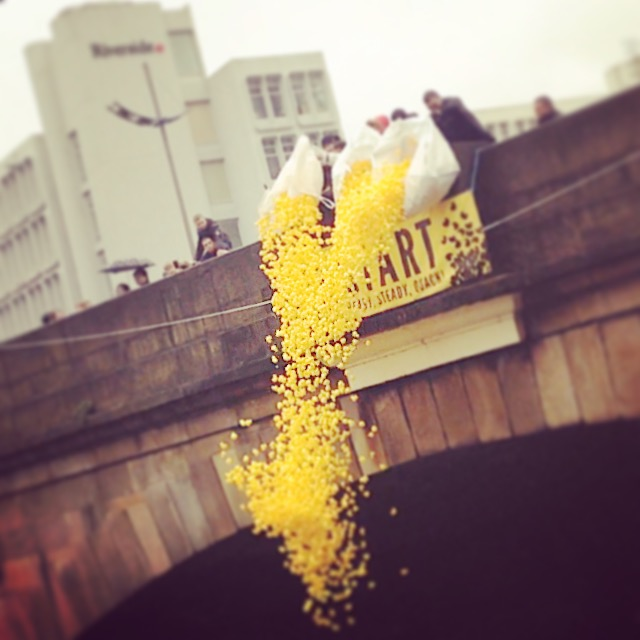 The Manchester Duck Race event