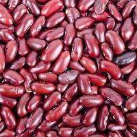 Exclusive Recipe: Kidney Bean Ice Cream