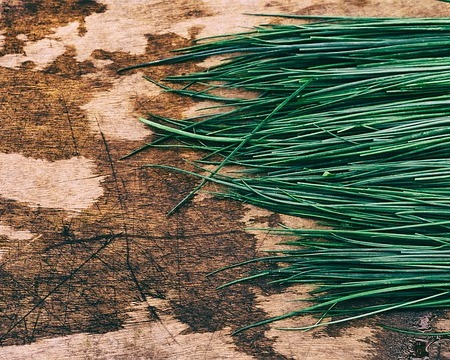 Chives and archives