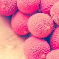 Evolutionary Theory: Are Leeches Related to Lychee?