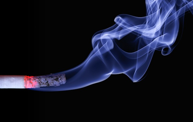 Smoked salmon cigarettes