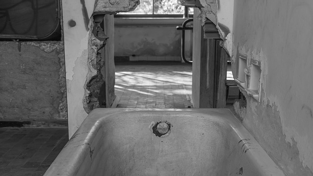 The Bath Tube
