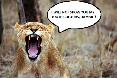 Show your tooth colours - saying
