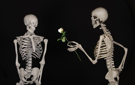 Finding your one true love