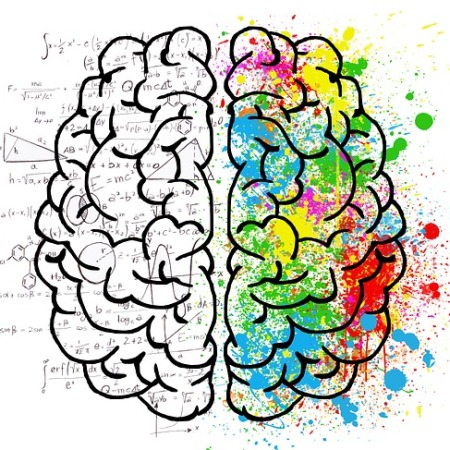 Brain language scan