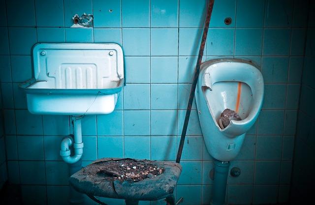 The Handwash Toilet