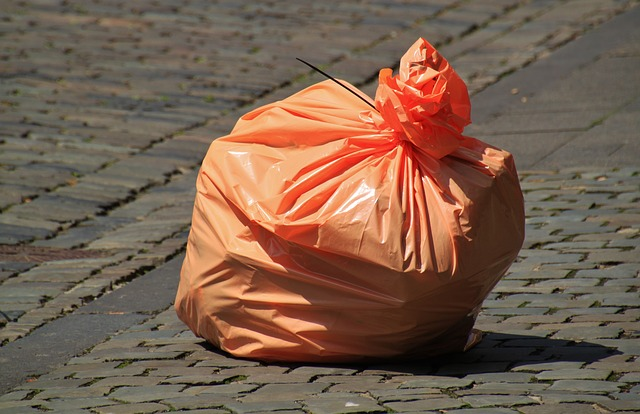 Baguettes food and a plastic bin bag
