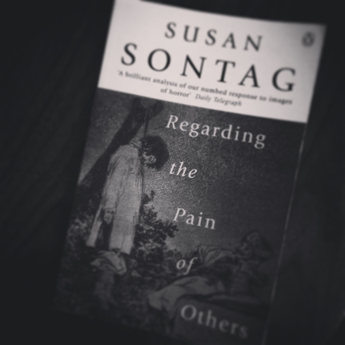 Regarding Pain Of Others >> Regarding The Pain Of Others By Susan Sontag Professional Moron