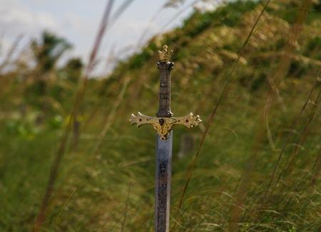 Blade in a field