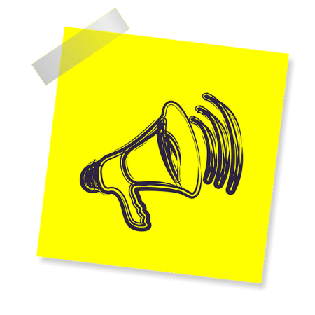 Megaphone for a voice
