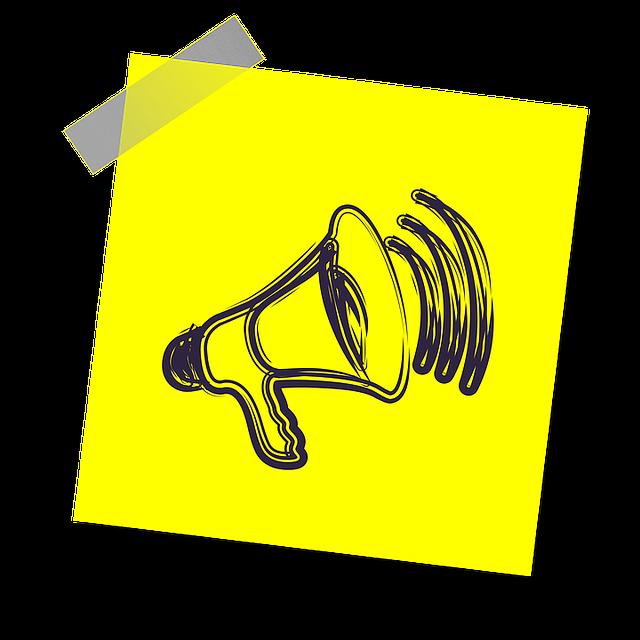 Megaphone for a voice