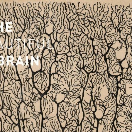 The Beautiful Brain by Santiago Ramón y Cajal
