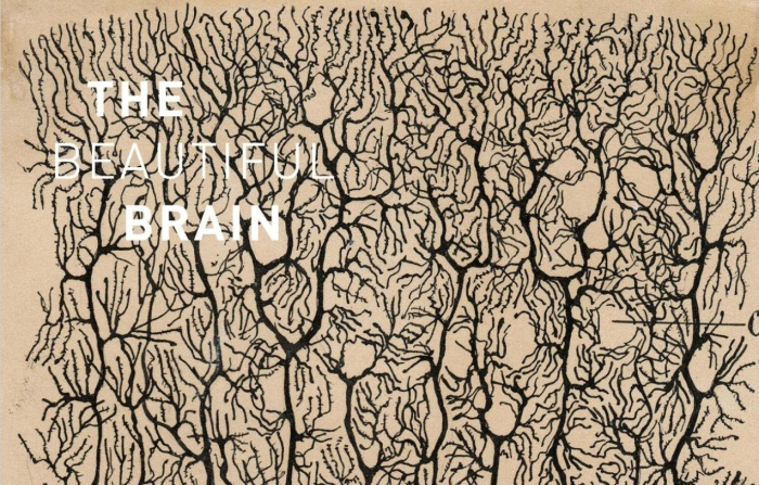 The Beautiful Brain by Santiago Ramón y Cajal