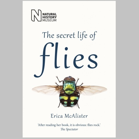 The Secret Life of Flies by Erica McAlister
