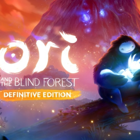 Ori and the Blind Forest on the Nintendo Switch