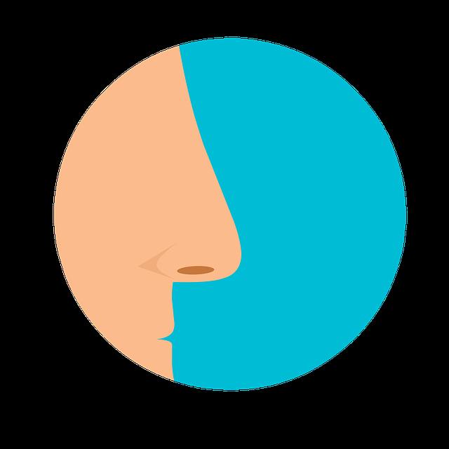A human nose