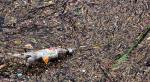 Bottle pollution in mud