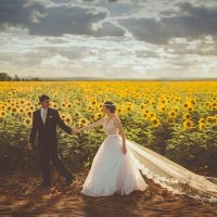 Wedding Haiku Special: Fall in Love With Our Words