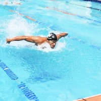 Butterfly Stroke: Explaining The Swimming Style From Hell