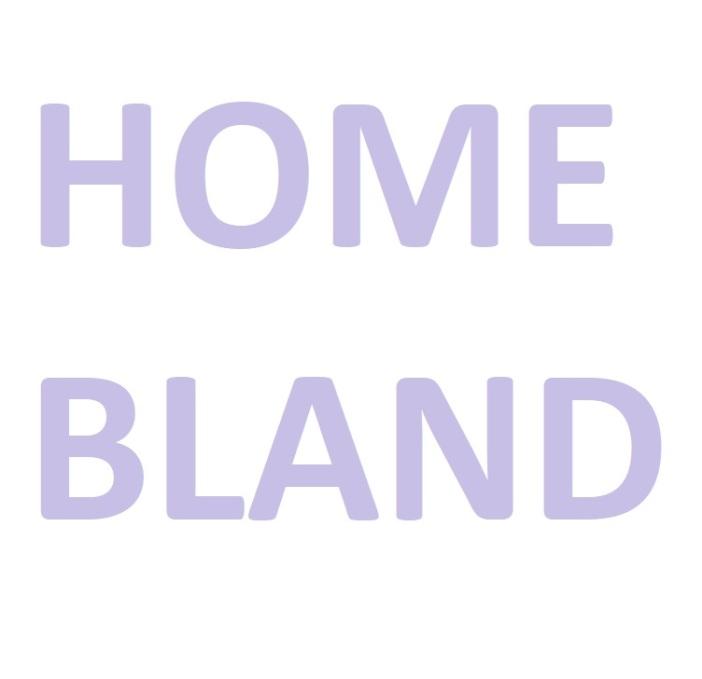 Homebland TV show logo