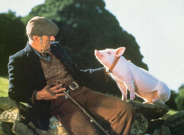 James Cromwell and the pig in Babe