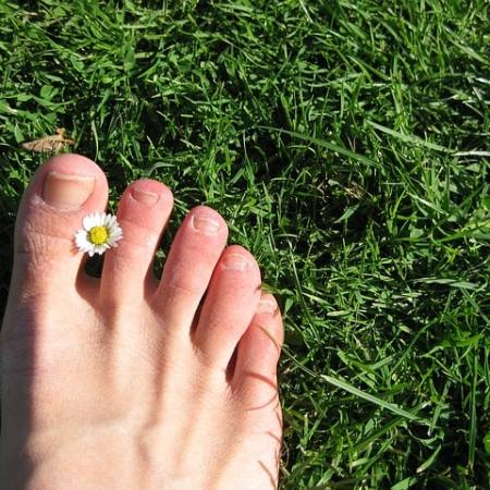 A foot with toenails and a flower between the big toe