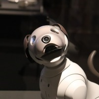 Exclusive Invention: RoboDog Extraordinaire—Fido 2.0