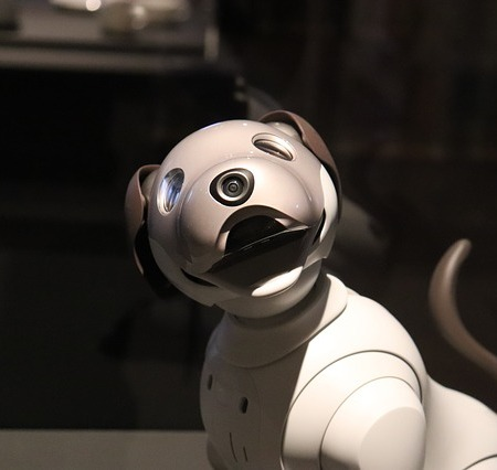 A robotic dog.