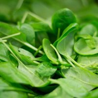 Spinach in the Workplace: How to Manage the Leafy Green