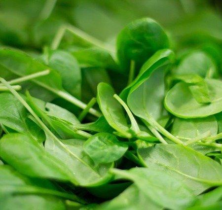 An assortment of spinach