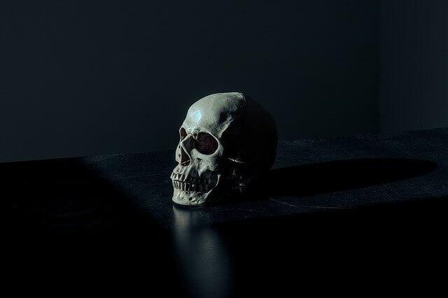 A human skull set against a black backdrop